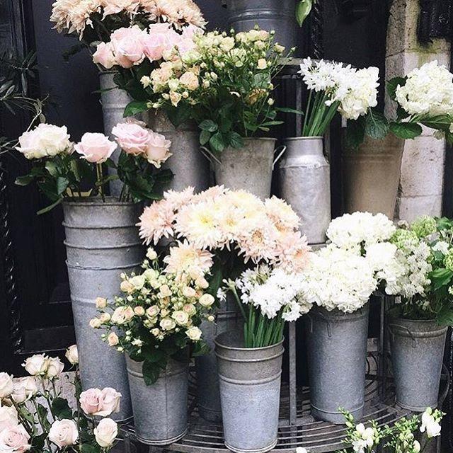 Sunday morning flower shopping. @stilettobeatss