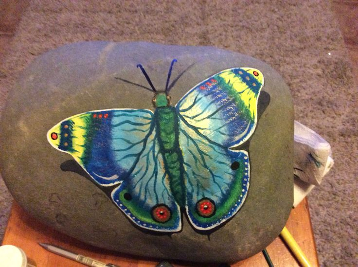 Mariposa Pintada en una piedra