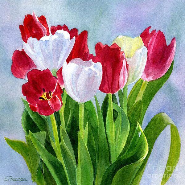 71 mejores imágenes de acuarelas flores tulipanes en pinterest