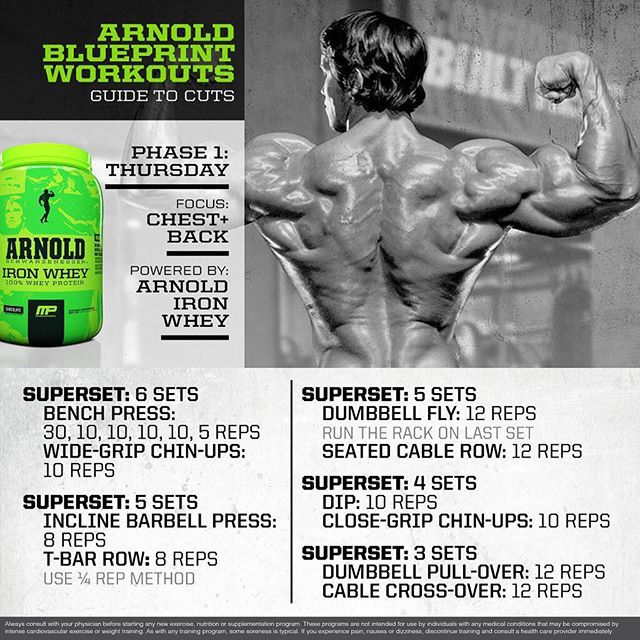 Best 25 arnold blueprint ideas on pinterest arnold workout arnold chest x back malvernweather Gallery