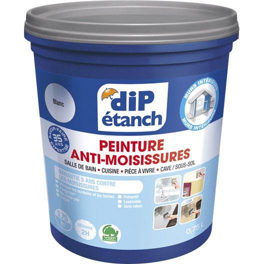 25+ best ideas about peinture anti moisissure on pinterest ... - Peinture Anti Moisissure Pour Salle De Bain