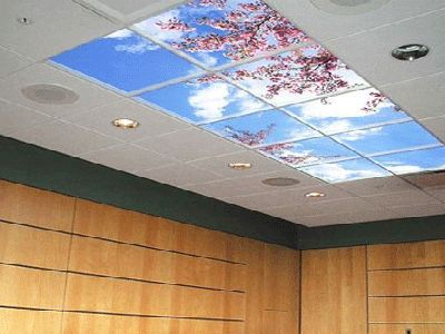 Ceiling Decoration Ideas 13 best ceilings images on pinterest | ceilings, false ceiling