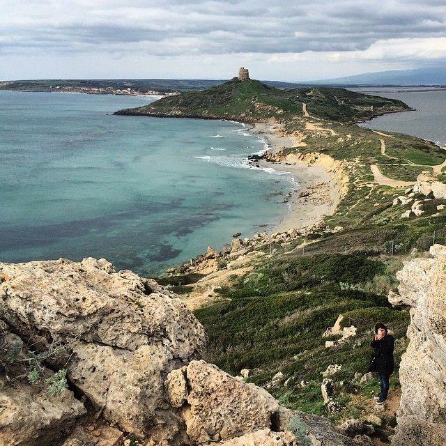 Tutte le foto del #wwim11sardegna nella Penisola del Sinis, #Cabras (OR) su Instagram https://instagram.com/explore/tags/wwim11sardegna/