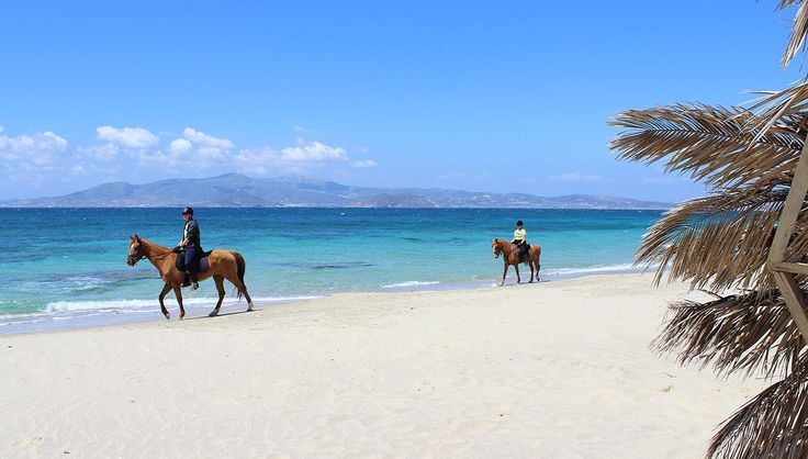 NAXOS HORSERIDING CLUB  We offer horse riding to the beaches of Naxos for riders of all abilities, from beginner to experienced.