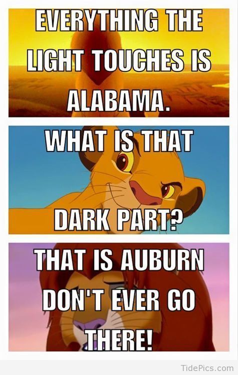 Dont Ever Go There Tide Pics Best Alabama Football Pictures And