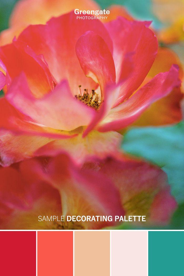 Rose Photo Print Red Orange Rose Flower Art Print Watercolor
