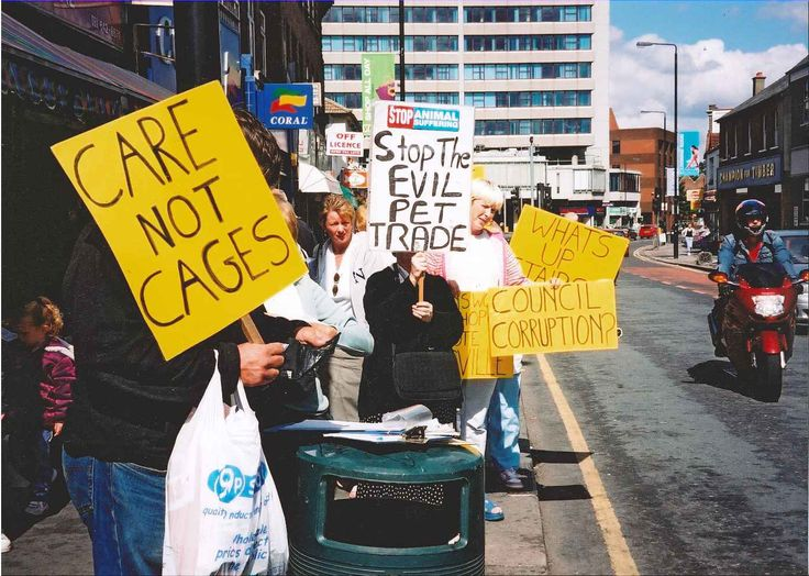 People protest about caged animals  (Old photo)