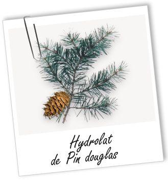 Hydrolat Pin Douglas des Monts du Forez BIO