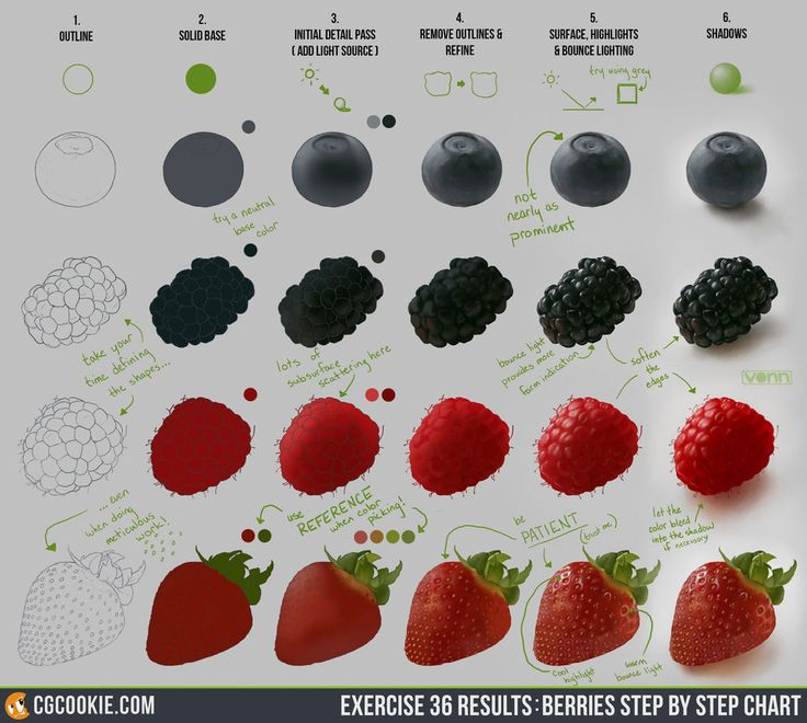 Exercise 36 Results: Berries Step by Step Chart by ConceptCookie on DeviantArt