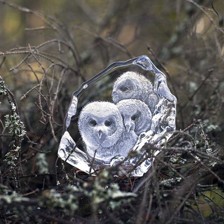 Wildlife crystal owls handmade at Målerås Glassworks. Design Mats Jonasson