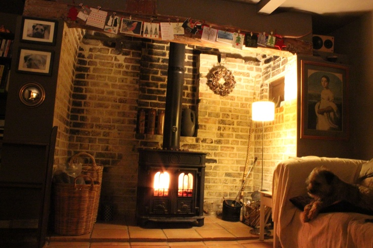 Cambridge Hotlogs burning on a Coalbrookdale Severn stove, with chestnuts roasting on the top