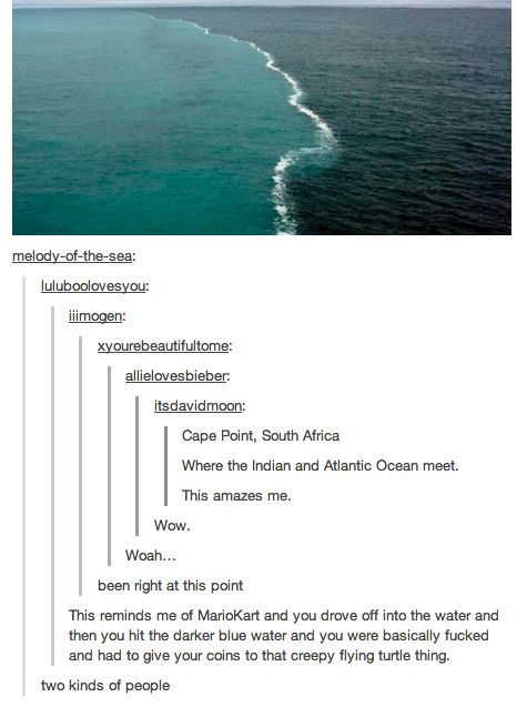 The two types of ocean lovers. | There Are Two Types Of People In This World