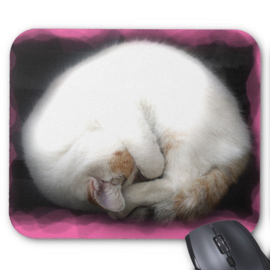 Do not Disturb the Cat Mausepad Mouse Pad