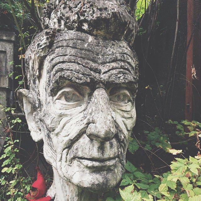 Great old tree carving, Seattle, Washington