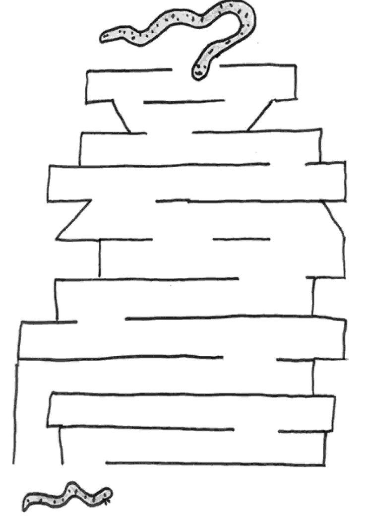 Exercices à imprimer pour les enfants. Labyrinthes 37