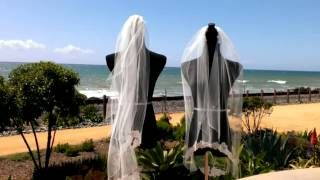 videos with brides veils blowing away - YouTube