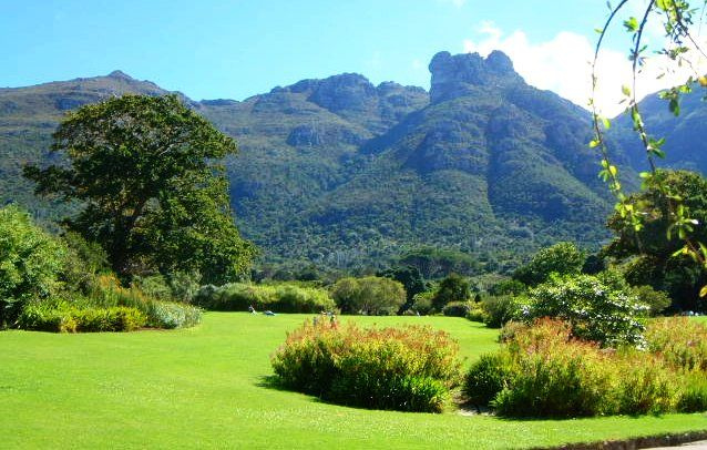Kirstenbosch Botanical Gardens with Table Mountain in the background