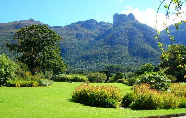 so beautiful - Kirstenbosch Botanical Gardens