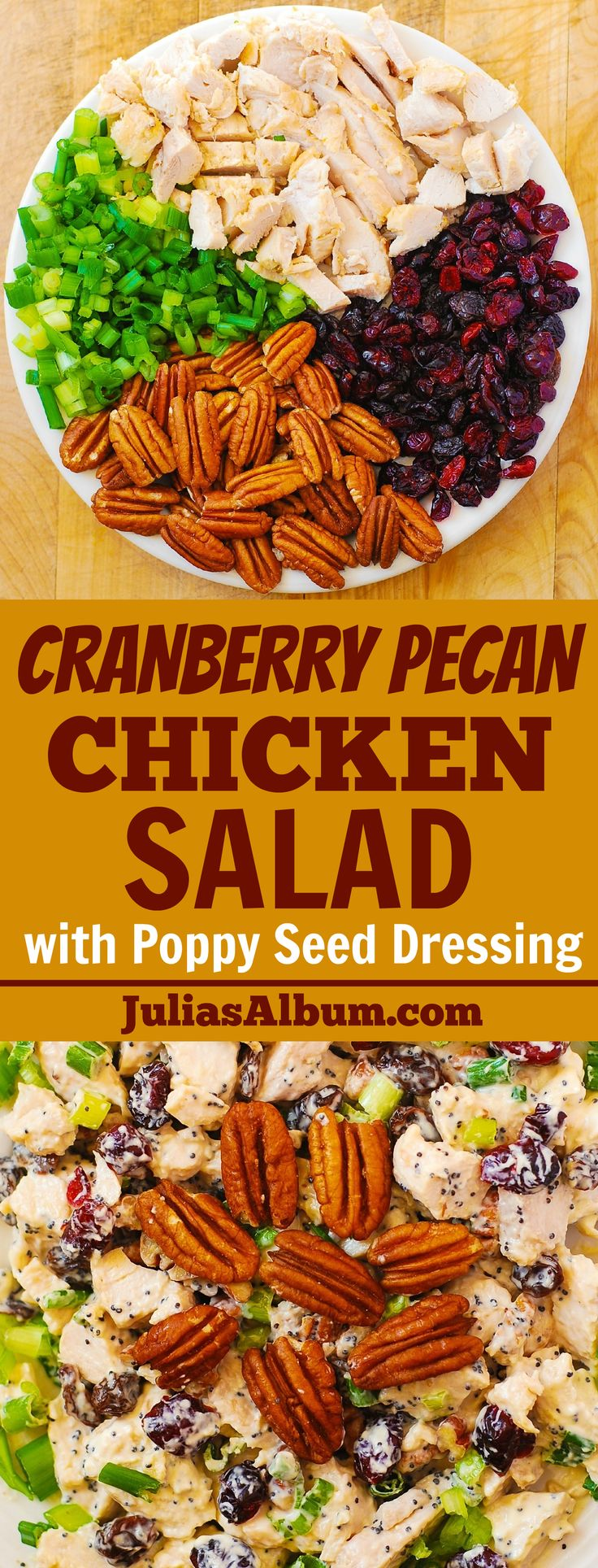 Cranberry Pecan Chicken Salad with Poppy Seed Dressing - also great for leftover Thanksgiving turkey meat! Gluten free holiday recipe.