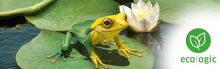 """Nálunk az öko sárga! A fenntarthatóság és a környezetvédelem a gondolkodás és a cselekvés szerves része, mely az """"eco!ogic"""" vállalati kezdeményezésben teljesedik ki. http://www.kaercher.hu/hu/Termekek/Home__Garden/ecologic.htm"""
