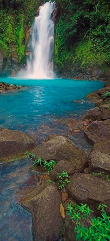 The turquoise blue Rio Celeste flowing through Tenorio Volcano National Park in Costa Rica • photo: Taranna Club de Viatges on Flickr