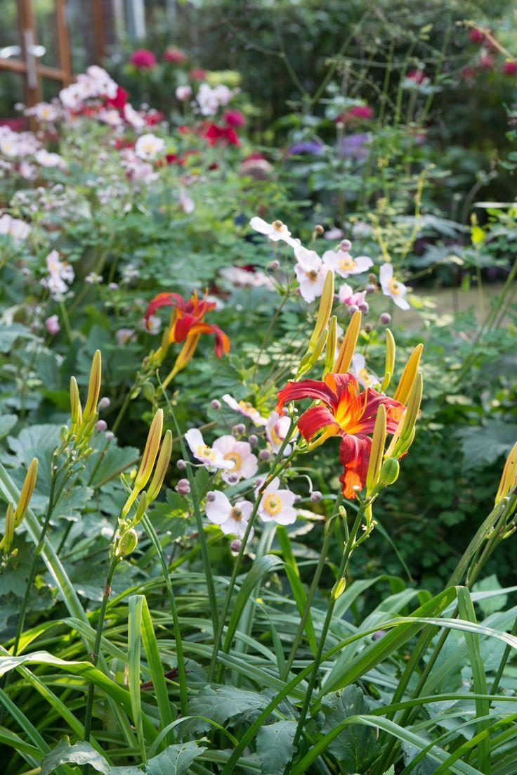 Meer dan 1000 ideeën over bloementuin ontwerp op pinterest   bloem ...