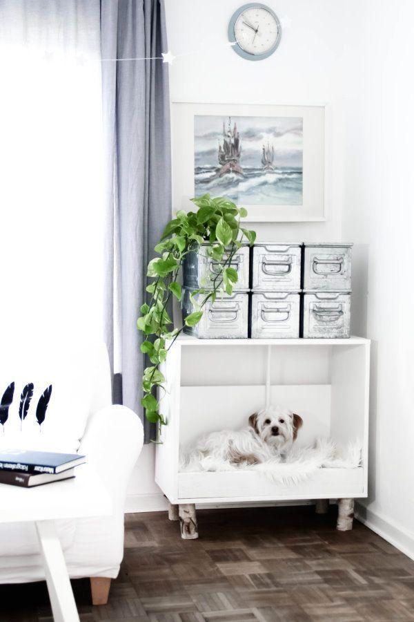 die besten 25 koffer hundebetten ideen auf pinterest welpen betten kleine hundebetten und. Black Bedroom Furniture Sets. Home Design Ideas