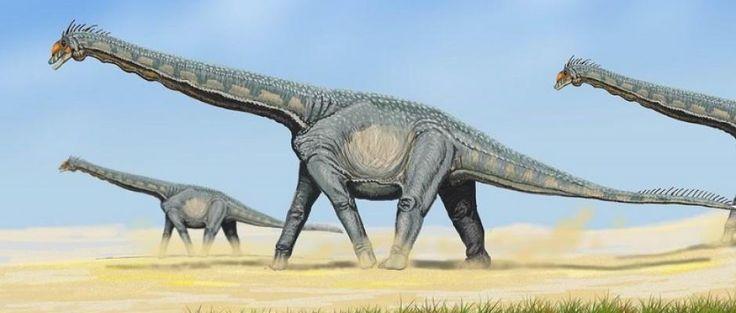 Les Dinosaures: les os d'un dinosaure herbivore de 60 tonnes ont été découverts avec un vidéo - Frawsy