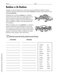 Vertebrates And Invertebrates Worksheets Grade 6                                                                                                                                                                                 More