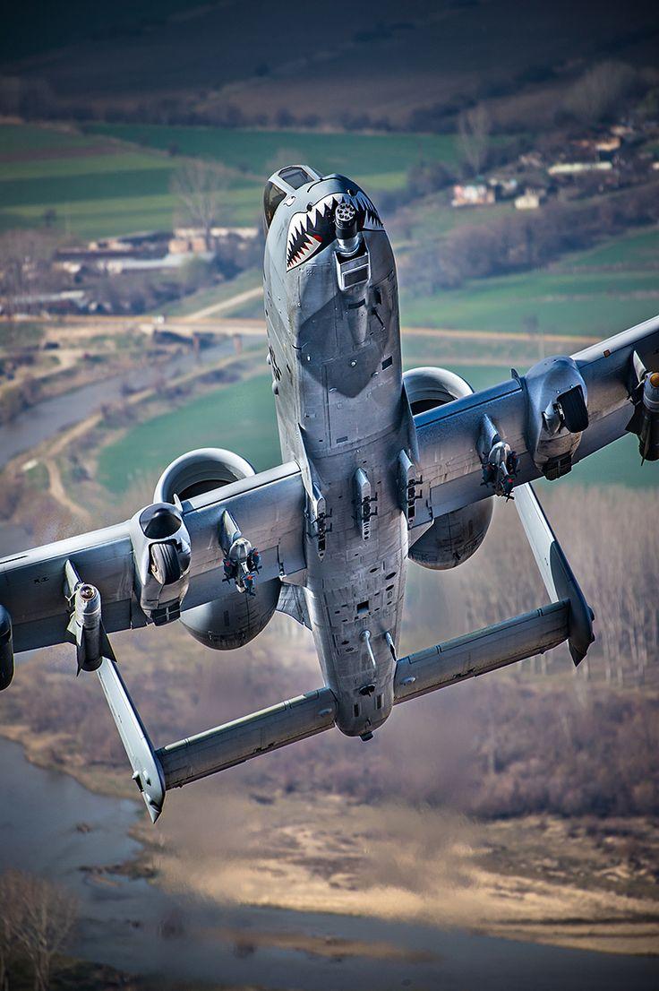 A-10 Warthog. ❣Julianne McPeters❣ no pin limits