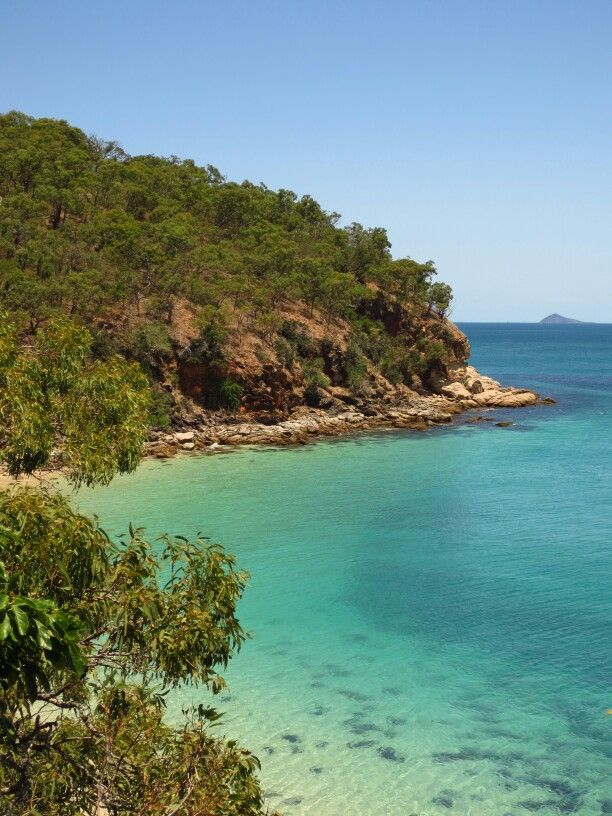 At the most southern point of the Great barrier Reef you will find the great Keppel island. One of it's beaches is Shelving Beach. Very secluded and private with a good chance of swimming with turtles. If anything a nice place to go snorkling and enjoy some of the reef.