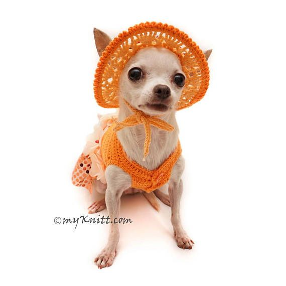 Bling Bling Orange Dog Dress Crochet Summer Hat Unique