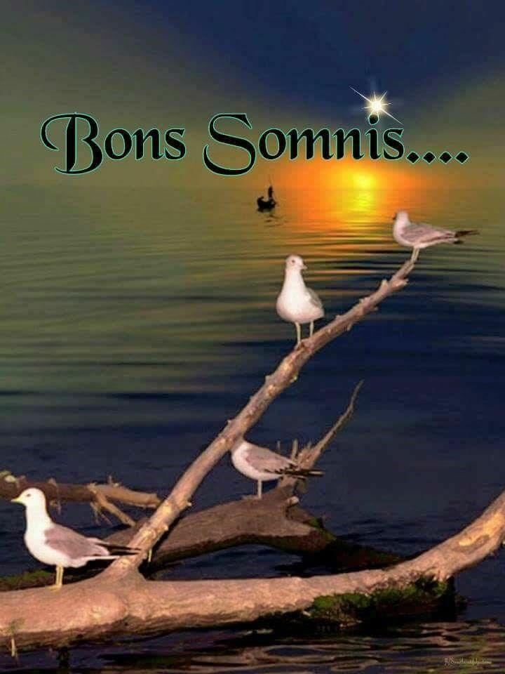 218 Best Images About Bon Dia Bona Tarda Bona Nit On Pinterest The O Jays Posts And Chang E 3