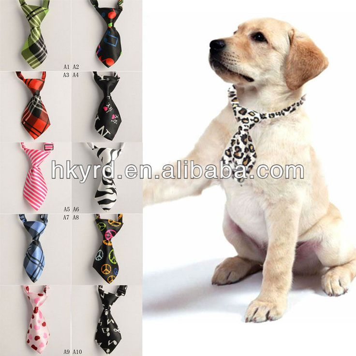 New Gird Adjustable Pet Dog Cat Handsome Bow Tie Necktie Clothes H0032 Photo, Detailed about New Gird Adjustable Pet Dog Cat Handsome Bow Ti...
