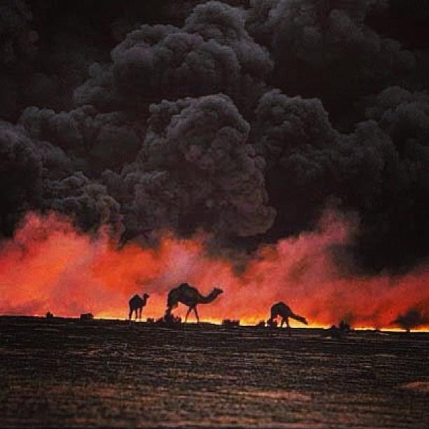 Beautiful (unfortunately)!! - Kuwait || Persian Gulf War / Desert Storm