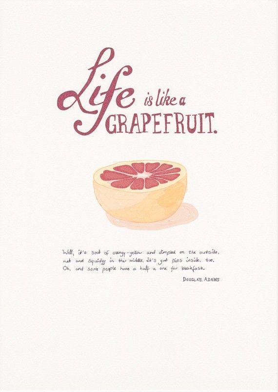 Douglas Adams - Life is like a grapefruit