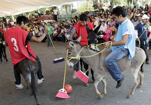 Donkey festival celebrated in Mexico