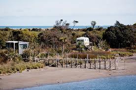 whitebait stands - ? Okuru River Google Search