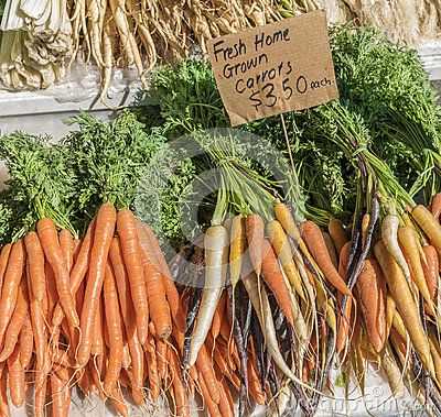 Bunches of fresh home grown orange, purple and yellow Dutch carrots on a market stall.