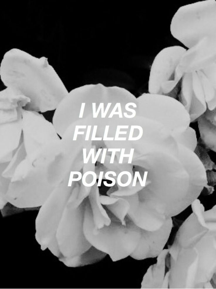 I still am. It flows through my veins like liquid flame, corrupting my organs and beating ny heart.