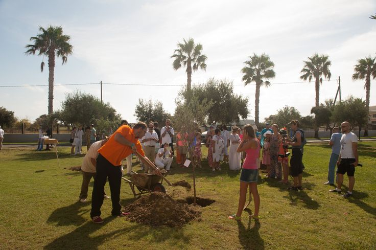 VISION VOYAGE Newlyweds planting their wish tree
