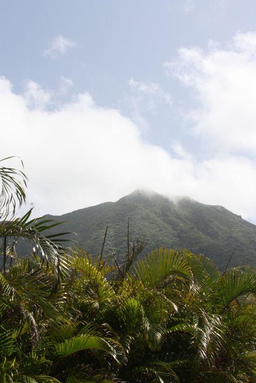 The Island of Nevis, West Indies #travel #NevisMangoFest http://www.weidknecht.com/2015/07/the-island-of-nevis-west-indies-travel.html
