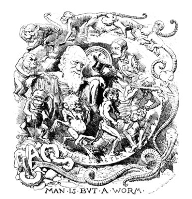 Charles Darwin Quotes about Worms - Lib Quotes