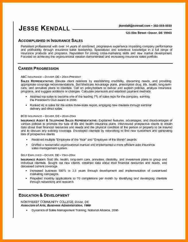 Real Estate Agent Resume Description Beautiful 5 Insurance Agent
