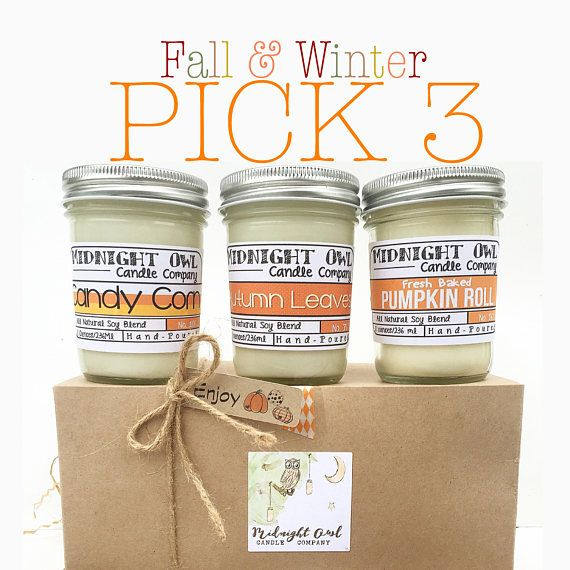 Pick 3 Fall & Winter Scented Candles Soy Candles Mason