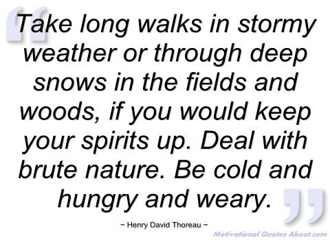 58 best Skymosity Weather Quotes images on Pinterest