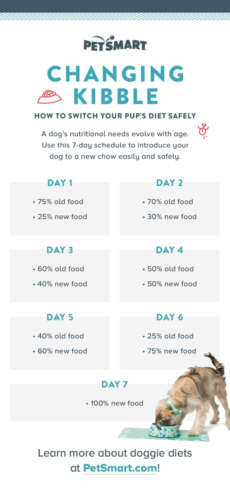 Are you transitioning your puppy from one food to another, or is your puppy ready to transition from puppy food to adult food? This handy chart will help you reduce the chance of digestion distress.