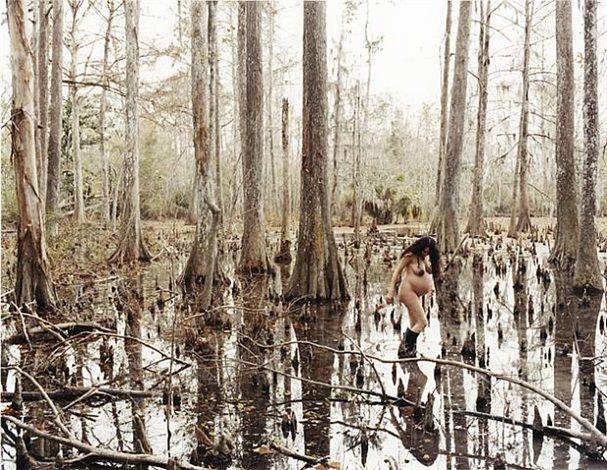 justine-kurland-wild-palms.jpg (480×371)