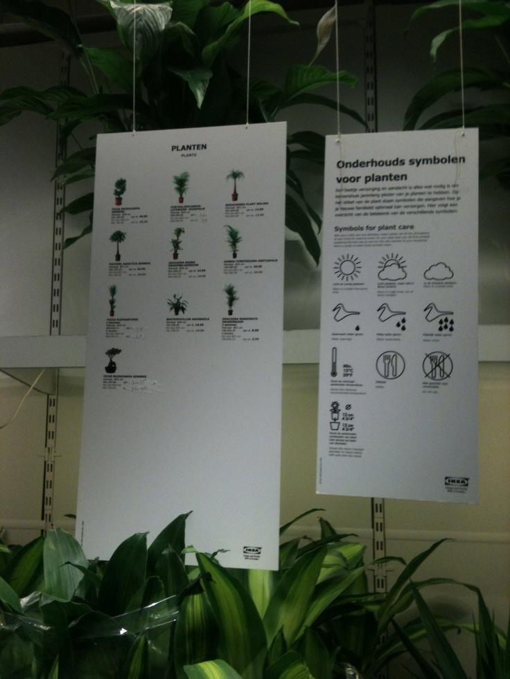 ikea verzorgingstips planten pictogrammen in the store pinterest ikea. Black Bedroom Furniture Sets. Home Design Ideas