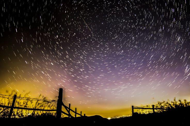 Tolfa la notte è viva! http://ift.tt/2bhah5M http://ift.tt/2aUr3JO http://ift.tt/2aSDkLq #nature #photography #wildlifephotography